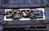 東照宮內彷彿敘述猴子一生的連環雕刻圖:●04-抱持理想的小猴望向青空.JPG