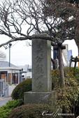 2017鎌倉長谷寺:DSC05236.JPG