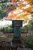 紅葉飄飄15日東京自由行--殿ヶ谷戸庭園:39●以供奉馬頭觀音來感念過去為人類生活帶來便利的馬匹所建立的碑,這是國分寺內現留存的11座石碑中的一座.JPG