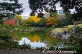 紅葉飄飄15日東京自由行--清澄庭園:18●廣闊的池塘內分佈有三座小島、再加之茶室式的典雅建築與映於水面的小島和樹影形成了庭園內一道亮麗的風景線07.J