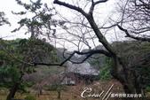 2017濕情畫意三溪園:DSC05120.JPG