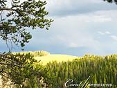 2019自駕隨性之旅(06)--100個死前必去景點之黃石國家公園(峽谷、瀑布篇):17●傍晚時分的暖光打在山坡頂上,奇蹟似地帶著光目色炫的效果.JPG