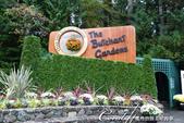 2018加拿大四年一度鮭魚洄遊V.S.洛磯山脈國家公園健走趣(7)--布查花園 :03●充滿期待自停車場步向花園入口.JPG