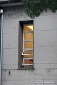 華山文創園區的窗窗景景:華山文創園區的窗窗景景12.jpg