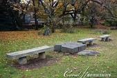 紅葉飄飄15日東京自由行--我在小石川植物園:36●池邊也有不少可以歇坐的地方.JPG