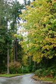 2018加拿大四年一度鮭魚洄遊V.S.洛磯山脈國家公園健走趣(8)--體驗溫哥華的日常風光:12●住在擁有豐富自然資源的加拿大,溫哥華市民擁有這樣一座三面環水的市立都會公園,真的好幸福.JPG