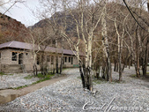 2019Amazing!穿越古絲路上的中亞五國之旅(8-1)--塔吉克斯坦之伊斯坎達爾湖:11●沿著一片枯樹林前往湖邊.jpg