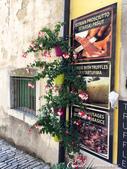 2018不思議之克、斯、義秘境歐遊記(5~1)--蒼翠山丘上的莫托溫山城 Motovun:08●松露酒、松露醬和松露橄欖油等,是莫托溫山城的熱門商品.JPG