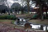 紅葉飄飄15日東京自由行--國營昭和紀念公園:44●很快地;藍天收起它的顏色,光線也漸暗下來.JPG