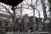 紅葉飄飄15日東京自由行--成田山新勝寺:26●池畔的石碑與雕像.JPG