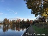 紅葉飄飄15日東京自由行--水光雲影、秋色無邊的水元公園:16●在沿著水域漫走的同時,孩童在對岸遊戲區的歡叫聲,一度打斷聆聽鳥語的意興,這也才驚覺,走了一段不算短的時