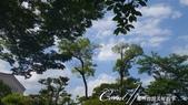 美哉慶澤園--鬧中取靜的小天地:DSC05522.JPG
