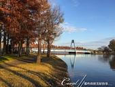 紅葉飄飄15日東京自由行--水光雲影、秋色無邊的水元公園:23●渾然天成的風光,不必特意尋找拍攝角度及特效,手舉起來,對準鏡頭,張張都是屬於自己的經典畫面.JPG