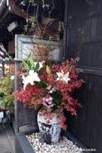 ●熱熱鬧鬧的成田山參道商店街:●店家前漂亮的盆景.JPG