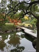 紅葉飄飄15日東京自由行--清澄庭園內的奇石及渡池石塊:01.JPG