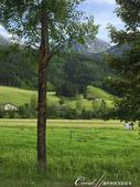 2018不思議之克、斯、義秘境歐遊記(8~3)--阿爾卑斯山城小鎮 Sillian 錫利安的恬靜小時:26●美不勝收的綠野鄉情.JPG