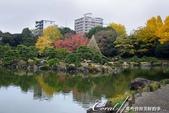 紅葉飄飄15日東京自由行--清澄庭園:13●廣闊的池塘內分佈有三座小島、再加之茶室式的典雅建築與映於水面的小島和樹影形成了庭園內一道亮麗的風景線01.J