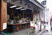 ●熱熱鬧鬧的成田山參道商店街:●有奇珍異獸骨、毛或其它部份製成的藥材.JPG