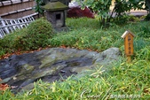 紅葉飄飄15日東京自由行--清澄庭園的特色名石:02.JPG