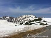 ●2016立山黑部之旅:●漫步其間,飽吸高海拔地區的新鮮空氣.jpg