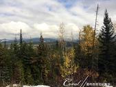 2018加拿大四年一度鮭魚洄遊V.S.洛磯山脈國家公園健走趣(5-2)--往亞當河途中窗景:IMG_9673.JPG