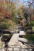 紅葉飄飄15日東京自由行--雖滿園蕭瑟卻也難掩風雅的向島百花園:21●由自然沼澤形成意趣橫生的池塘邊,佈滿應景的秋天植物,連芒草也看起來具有詩意06.JPG