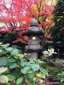 紅葉飄飄15日東京自由行--愛宕神社:09●小小神社內的秋之意境.JPG