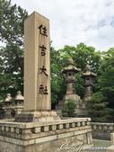 2017初夏14日自由行:●擁有1800年以上悠久歷史的住吉大社,全日本約2300家住吉神社分社的總社.JPG
