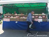 2019Amazing!穿越古絲路上的中亞五國之旅(15-2)--烏茲別克斯坦之喬蘇市集:03●走訪市集,最能體會當地人的民生消費,也是最貼近生活、傳統的一種方式 (6).JPG