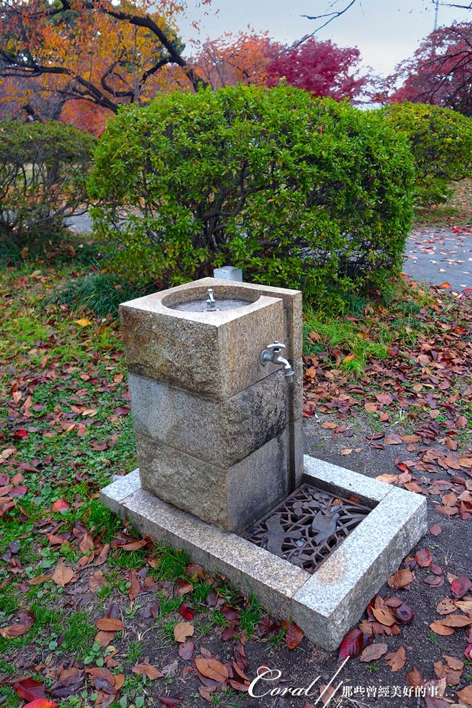紅葉飄飄15日東京自由行--我在小石川植物園:55●仔細看這提供洗手與寵物飲水的設施,腳底那設計漂亮的濾水網,充份延伸了園區的美感,連小地方都很用心.JPG