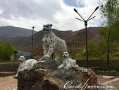 2019Amazing!穿越古絲路上的中亞五國之旅(4-5)--吉爾吉斯斯坦之伊塞克湖渡假村:03●途中經過一處休息站,欣見11比例的雪豹 Snow Leopard雕像.JPG