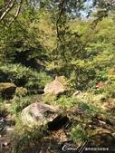 神鍋高原熔岩流處處是風景:IMG_5242.JPG