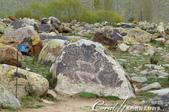 2019Amazing!穿越古絲路上的中亞五國之旅(5-1)--吉爾吉斯斯坦之露天石畫博物館:24●這也是一幅象徵狩獵場景的石畫.JPG