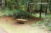 ●寂寞的椅子:301.jpg