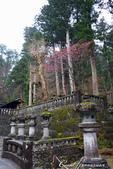 紅葉飄飄15日東京自由行--大猷院:●經過兩旁樸素的石燈籠,便來到仁王門跟前01.JPG