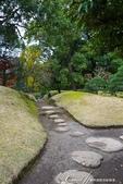 紅葉飄飄15日東京自由行--清澄庭園內的奇石及渡池石塊:11.JPG