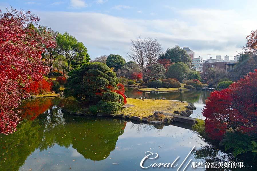 紅葉飄飄15日東京自由行--我在小石川植物園:10●被繽紛色彩環抱著的一池靜靜地、盛裝著零星落葉,及倒影著天空的秋水於小徑的盡頭映入眼簾.JPG