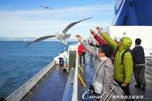 2018加拿大四年一度鮭魚洄遊V.S.洛磯山脈國家公園健走趣(6-1)--BC卑詩渡輪:01●渡輪上的餘興節目──無渭海風冷颼颼,大伙兒前往甲板上餵食海鷗.jpg