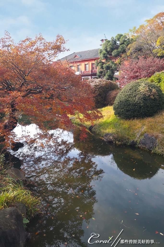 紅葉飄飄15日東京自由行--我在小石川植物園:11●被繽紛色彩環抱著的一池靜靜地、盛裝著零星落葉,及倒影著天空的秋水於小徑的盡頭映入眼簾.JPG