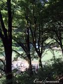 八反瀑布的無敵美景:IMG_5275.JPG
