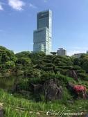 從慶澤園的不同角度欣賞阿倍野HARUKAS:IMG_9640.JPG