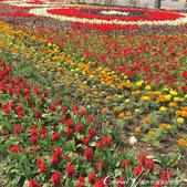 2019Amazing!穿越古絲路上的中亞五國之旅(7-5)--塔吉克斯坦首都杜尚別印象之旅:13●前往獨立紀念碑的大道旁,花海如織、美不勝收.JPG