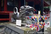紅葉飄飄15日東京自由行--日光二荒山神社:●可將祈願的籤掛在似獅又似犬的狛犬前.JPG