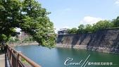 壯麗的大阪城城池美景:DSC05444.JPG