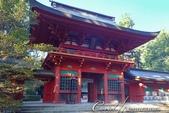 紅葉飄飄15日東京自由行--聚集正能量的香取神宮之旅:27●總門之後是代表性建物──樓門03.JPG