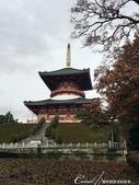紅葉飄飄15日東京自由行--成田山公園:13●象徵真言宗佛教的平和大塔.JPG