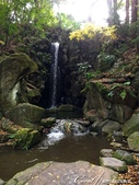 紅葉飄飄15日東京自由行--成田山公園:14(2)●洗心堂旁的雄飛瀑布,像似一把從林間岩石插入水裡的銀箭.JPG