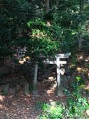 紅葉飄飄15日東京自由行--我在小石川植物園:49●林間深處的小小神社,可見民間信仰無所不在.JPG