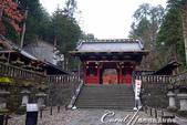 紅葉飄飄15日東京自由行--大猷院:●經過兩旁樸素的石燈籠,便來到仁王門跟前04.JPG