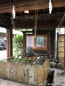 紅葉飄飄15日東京自由行--愛宕神社:10●小小神社內的秋之意境.JPG